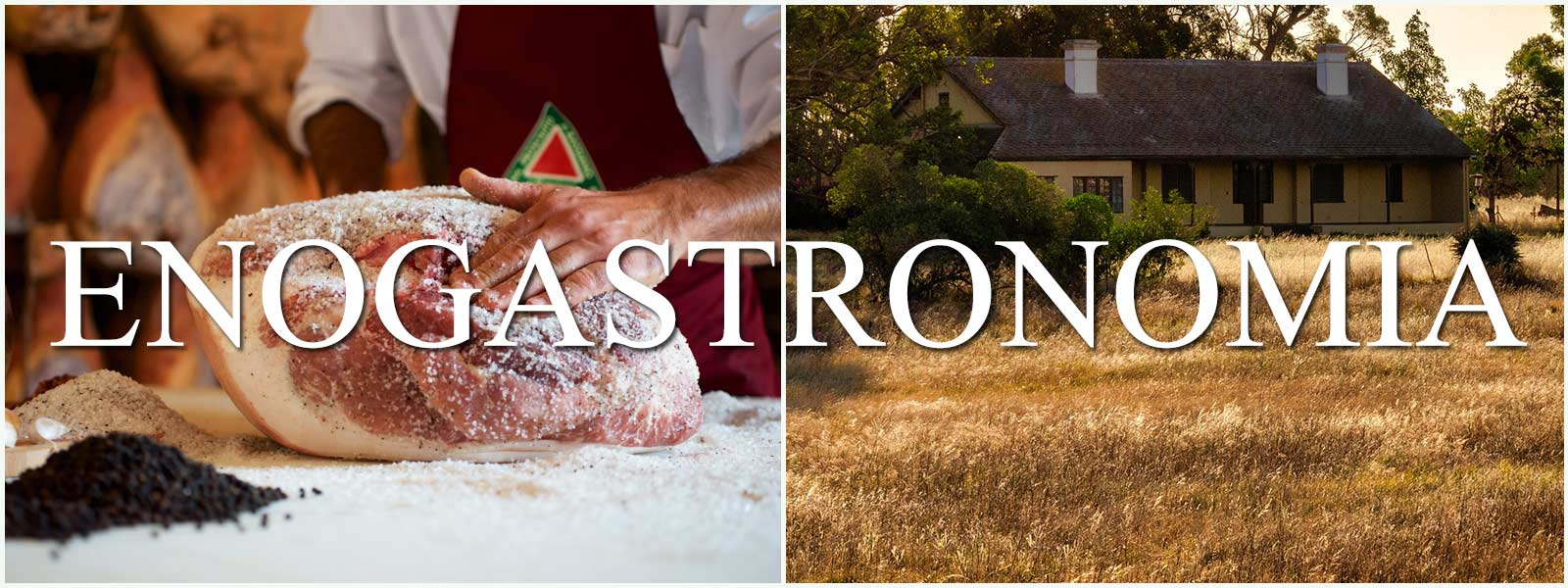 progetto-restyling-sito-bassiano-enogastronomia
