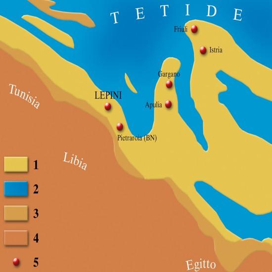 Immagine Tetide