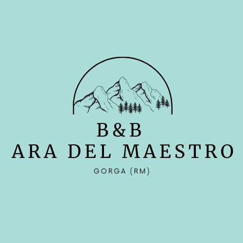 bb-ara-del-maestro-6
