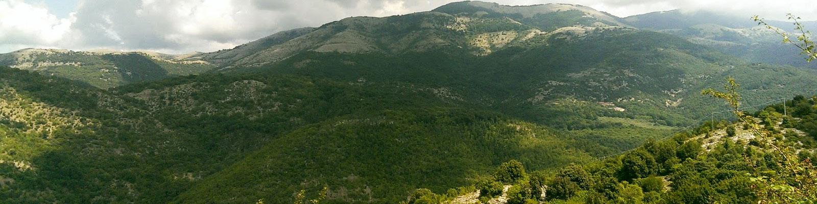 nelle-macchie-dei-monti-lepini