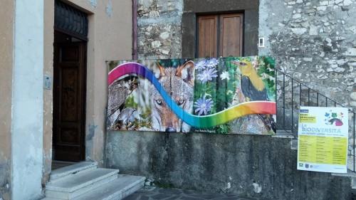 Segni, ingresso sala Pio XI