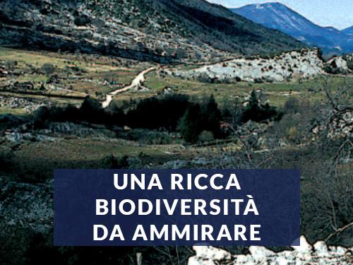 una-ricca-biodiversita-da-ammirare-home