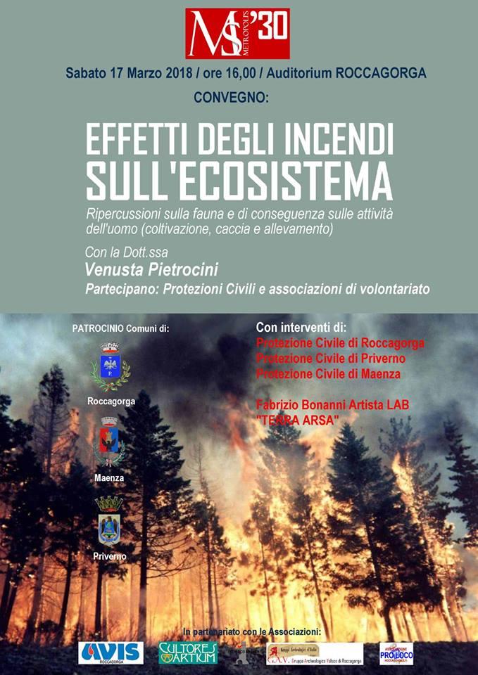 Convegno: Effetti degli incendi sull'ecosistema @ Auditorium | Roccagorga | Lazio | Italia