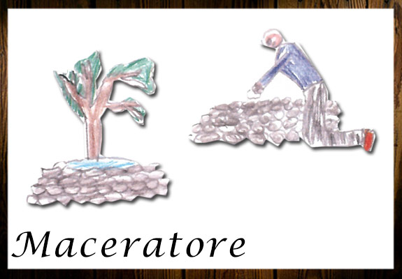 maceratore