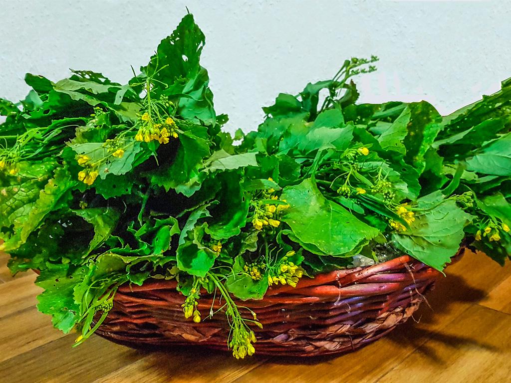 broccoletti-1024x768