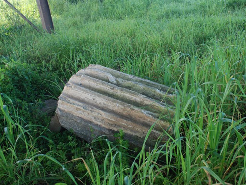 Resti del Tempio Giunone Regina - foto di parco lepini