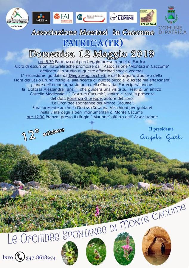 Patrica: Le orchidee spontanee di Monte Cacume @ parcheggio tunnel di Patrica | Patrica | Lazio | Italia