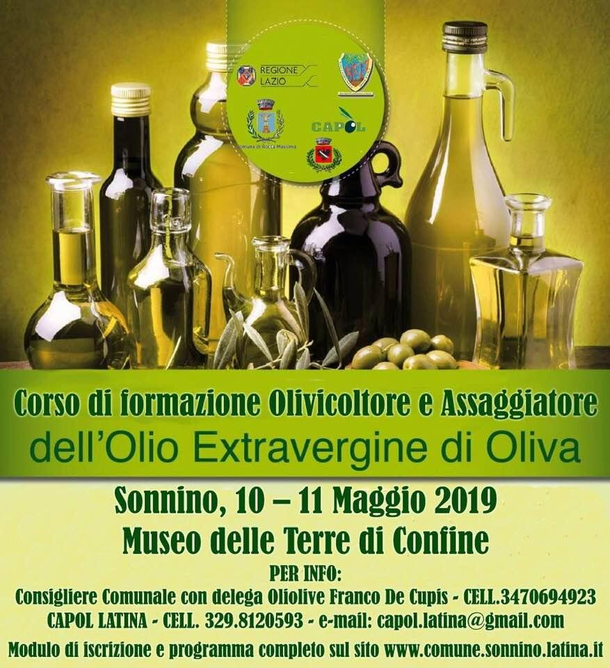 SONNINO: Corsi di formazione olivicoltore e assaggiatore dell'olio extra vergine d'oliva @ Museo delle terre di confine | Sonnino | Lazio | Italia