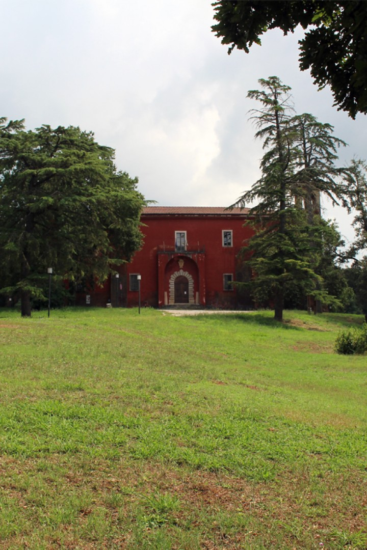 Bosco del Castello di San Martino
