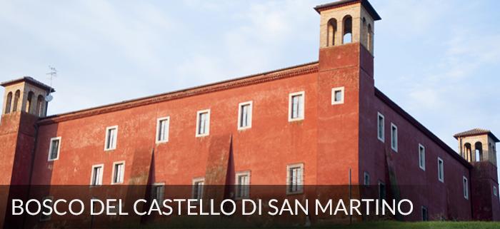bosco-e-castello-san-martino-monumenti-naturali