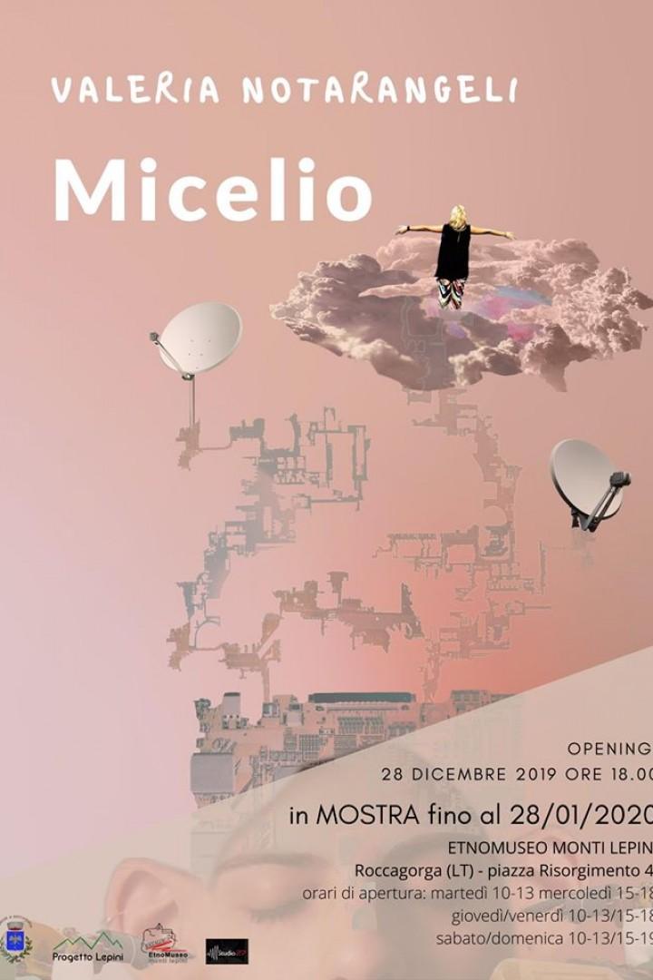Roccagorga: Micelio @ ETNOMUSEO MONTI LEPINI | Roccagorga | Lazio | Italia