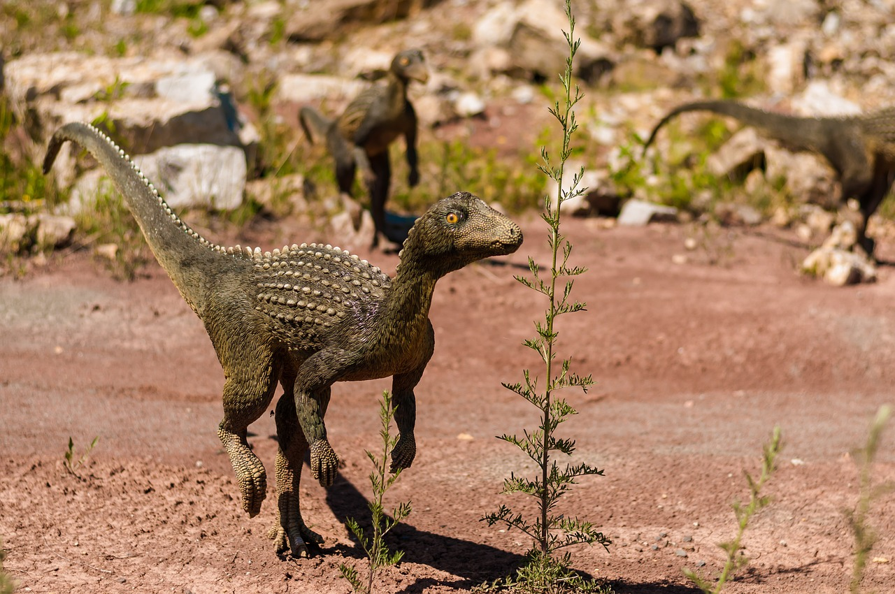 dinosauro-2-dinosauria-le-impronte-di-sezze