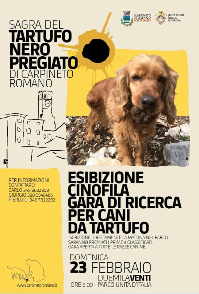 carpineto-romano-23-febbraio