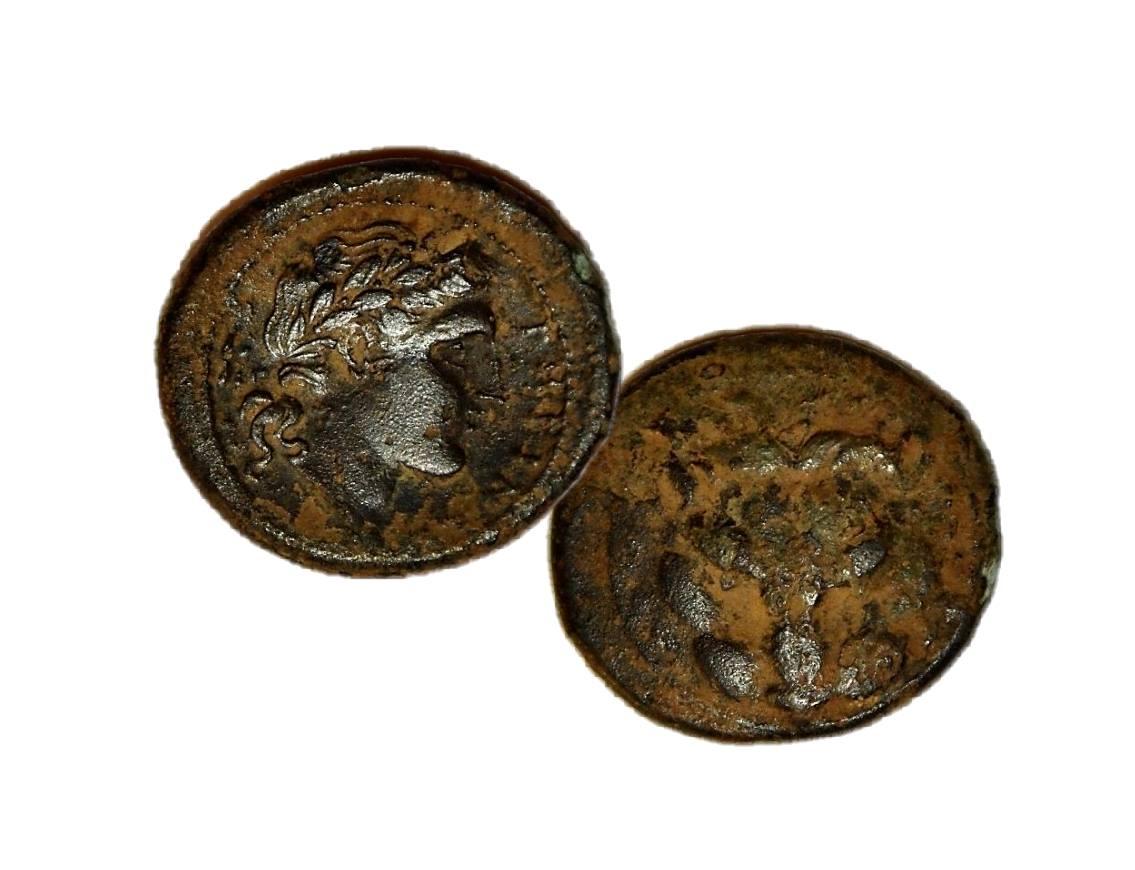 monete-priverno