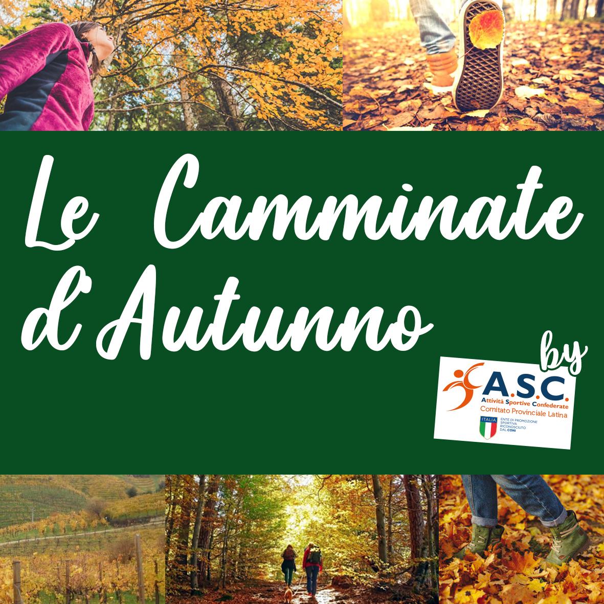 camminate_autunno