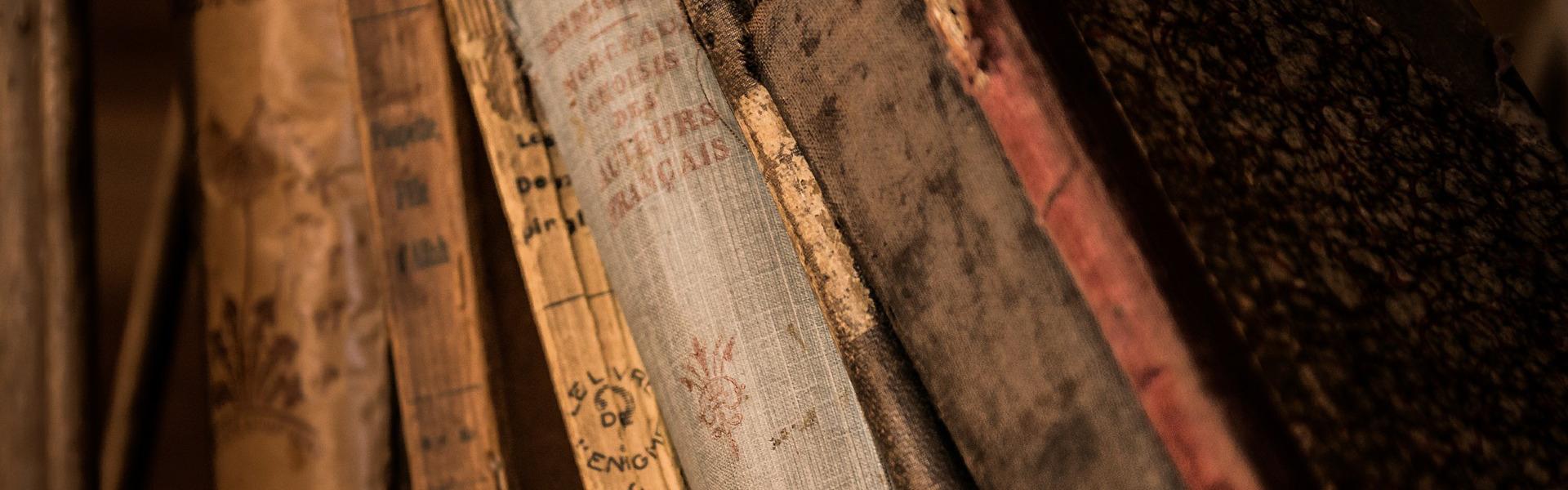 cop-archivio-sistema-integrato-musei-e-biblioteche